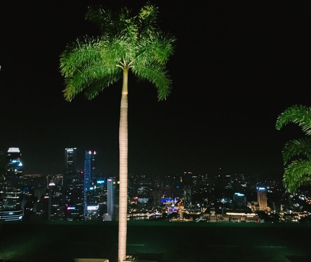 インフィニティプールの夜の雰囲気を撮影した写真
