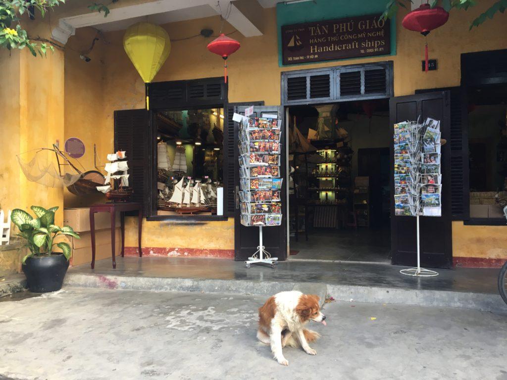 チャンフ―通りの可愛いハンドクラフトショップとその店先でくつろぐ犬を撮影した写真