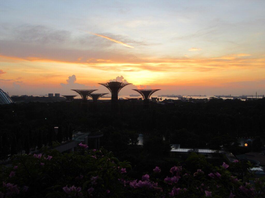 マリーナベイ・サンズのお部屋から見た朝日を撮影した写真